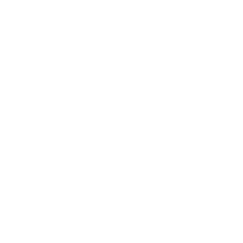 Insight's Leadership Academies